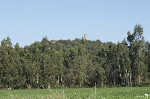 castillo de sant iscle. 00 castillo desde lejos